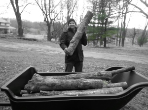 Oak logs are seriously heavy, so if you have soft arms-of-newt like I do, get yourself a burlier sort to lift them.